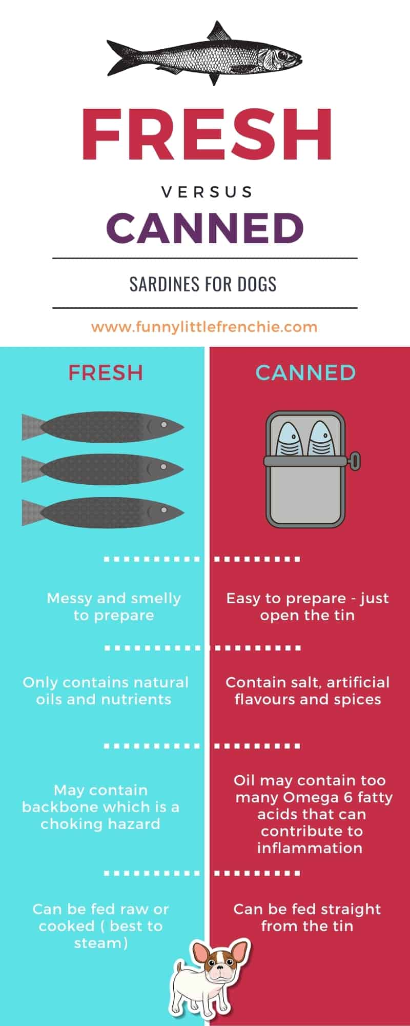 Fresh Vs Canned Sardines for Dogs Infographic from Funny Little Frenchie